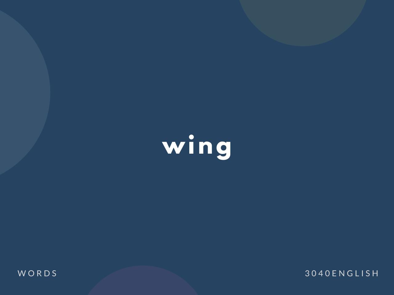 翼だけではない wing の意味と簡単な使い方【例文あり】