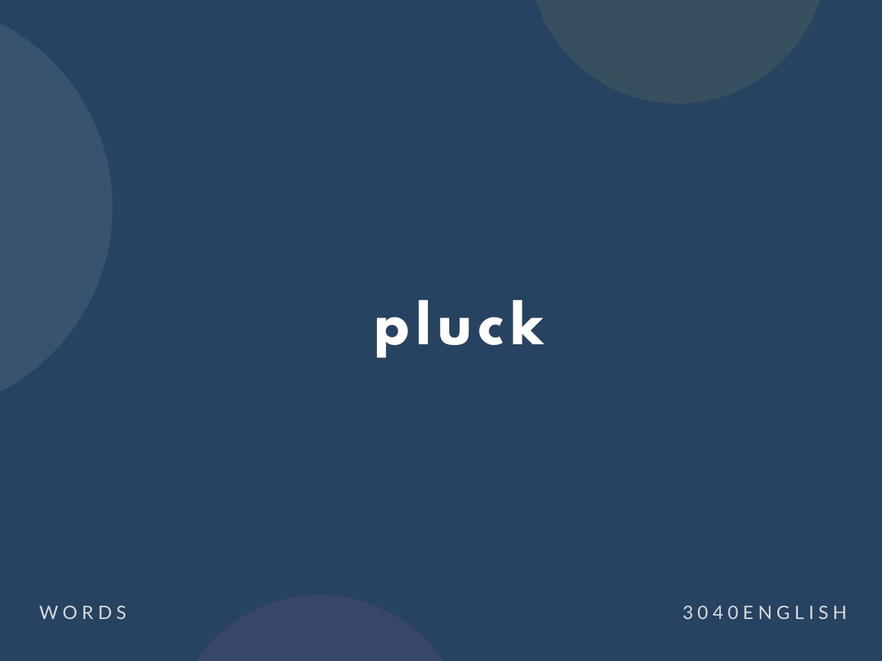 pluck の意味と簡単な使い方【音読用例文あり】