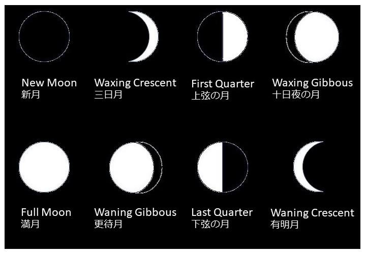 月の種類 - 英語表現【満月・新月・上弦の月・下弦の月など】