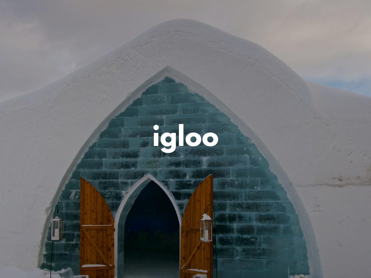 igloo : ドーム型の雪と氷の家
