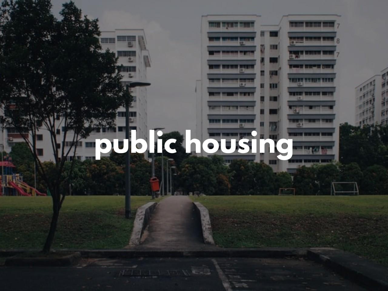 public housing : 公営住宅