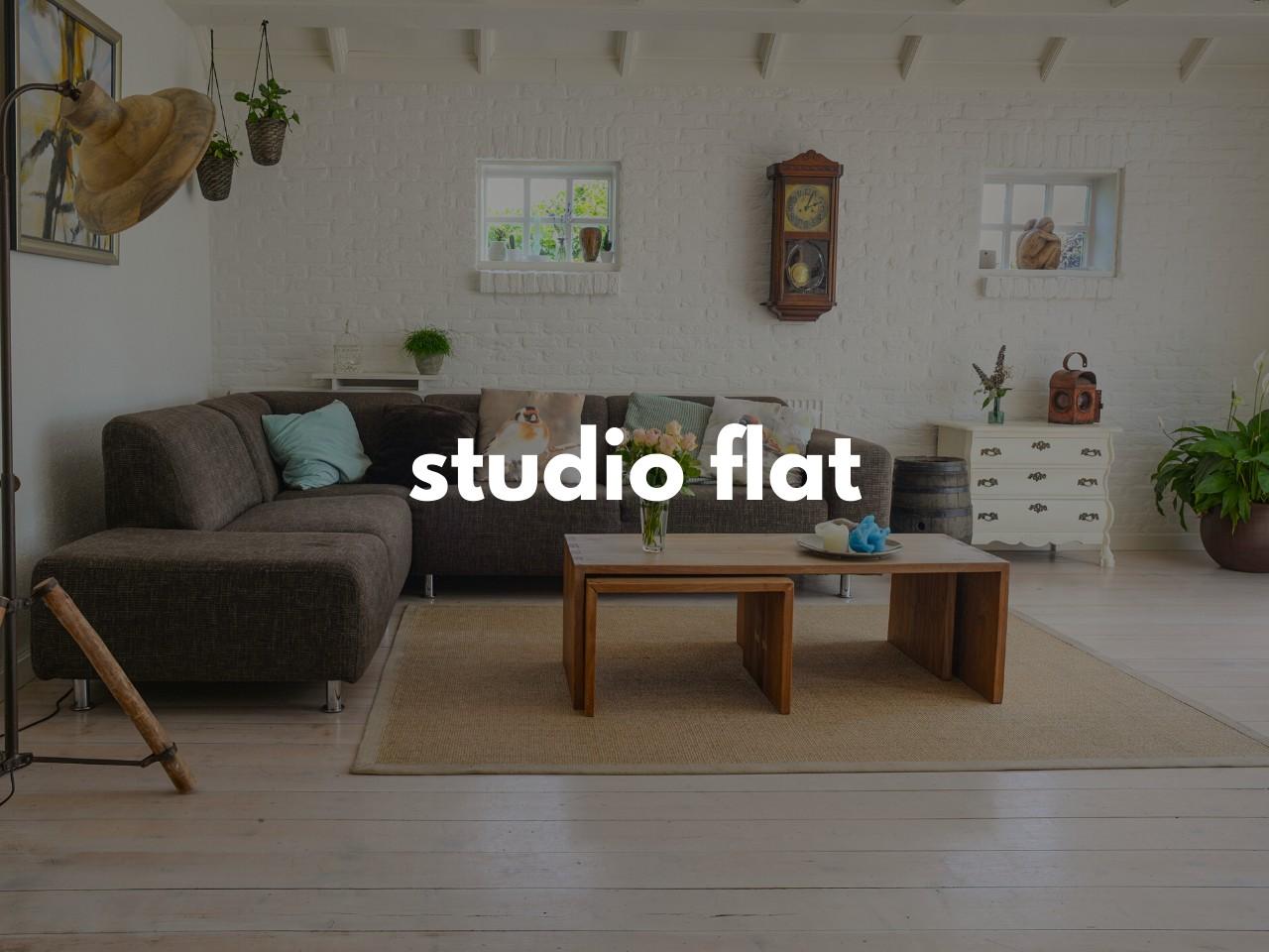 studio flat : ワンルームマンション