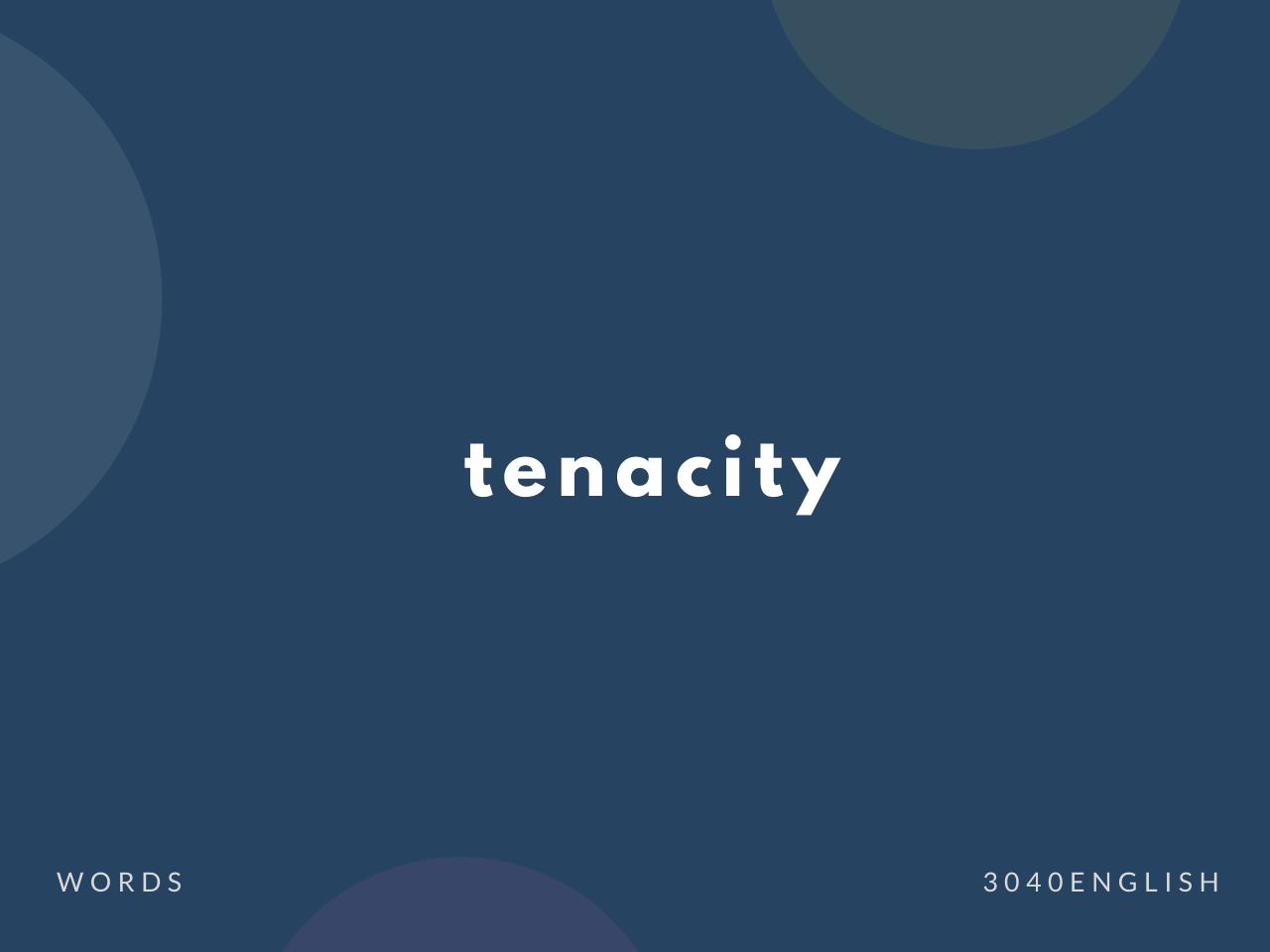 tenacity の意味と簡単な使い方【音読用例文あり】